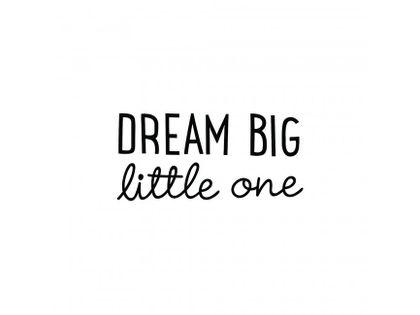 Samolepka na stenu - DREAM BIG little one